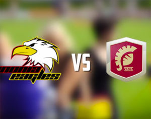 pannonia eagles gameday zusammenfassung