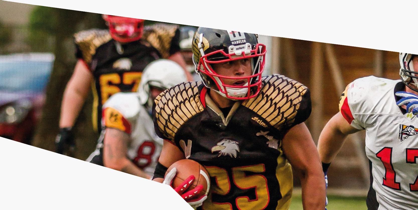 pannonia eagles american football