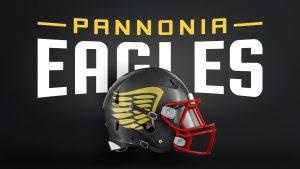 Eagles American Football Helm